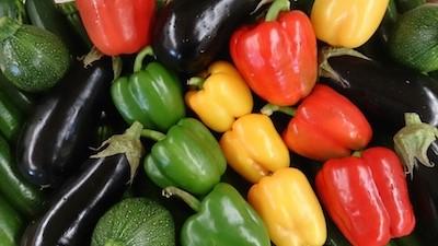 Le tian aux légumes du soleil