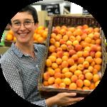Aurélie Abricots Français été 2020 fruits et légumes bio angers