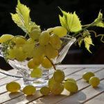 Grappe de Raisin blanc, recette salade de céleri pomme granny et raisin blanc