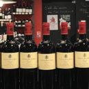 POMEROL verticale Chateau Belle Brise, Pommerol, Bordeaux, Vin de Bordeaux, Biodynamie, Bordeaux Biodynamie, des halles et des gourmets, angers