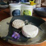 fromage de brebis, yaourt au lait de brebis, Les Brebis Anjouées